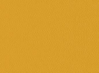 Yellow K2001-06