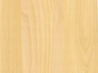 Moodle WI50012-02