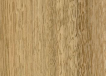 Australian Species Engineered Hardwood - Spotted Gum