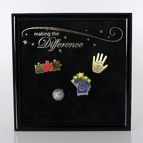 Award Pin Display - Making the Difference