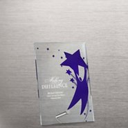 Mini Acrylic Award Plaque - Team Player
