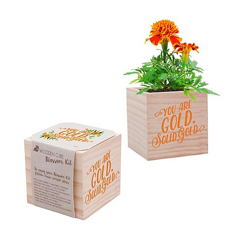Appreciation Plant Cube - You Are Gold. Solid Gold.