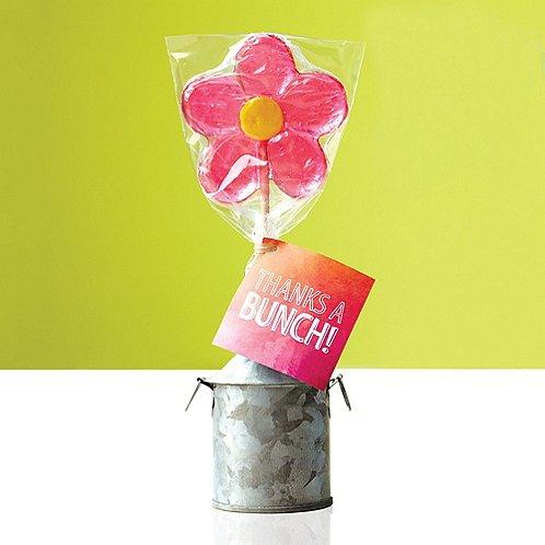 Daisy Lollipop - Thanks A Bunch!