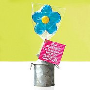 Daisy Lollipop - Your Commitment & Dedication Help Us Grow!