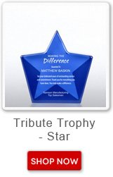 Tribute trophy - star. Shop now button