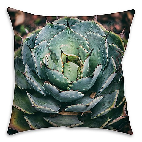 Single Succulent Square Throw Pillow In Green Bed Bath