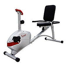 image of Sunny Health & Fitness SF-RB4417 Recumbent Bike in Silver