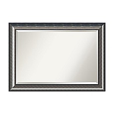 image of 42-Inch x 30-Inch Quicksilver Mirror in Silver