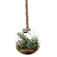image of D&W Silks Flocked Donkey Tail and Easter Grass in Hanging Glass Sphere