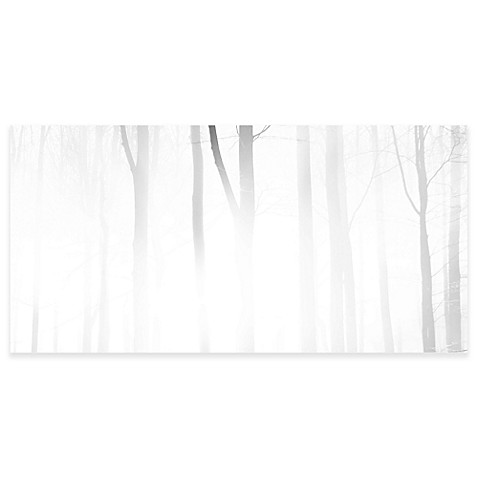 637222 Marmont Hill Foggy Forest 45 Inch X 22 Inch Canvas Wall Art likewise Fitness Gear furthermore Inaugural emporiu likewise 544838 Lenox Federal Platinum Monogrammed Script Letter P Accent Plate likewise . on smart fitness program