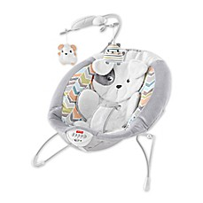 image of Fisher-Price® Sweet Snugapuppy Dreams Bouncer