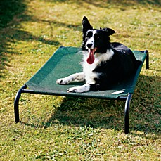 image of Coolaroo® Steel Frame Pet Bed