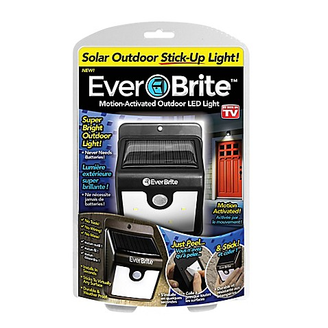 Everbrite Motion Activated Outdoor Led Light In Black