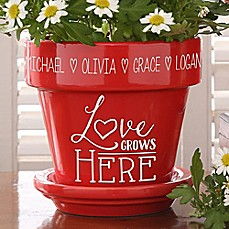 image of Love Grows Here Flower Pot