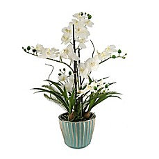 image of D&W Silks Cream Orchids in Round Ceramic Planter