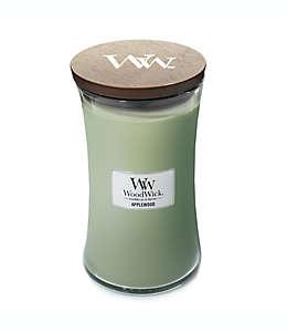 Vela en vaso de vidrio Applewood WoodWick® de 623.69 g