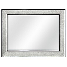 image of brighton wall mirror in pewter