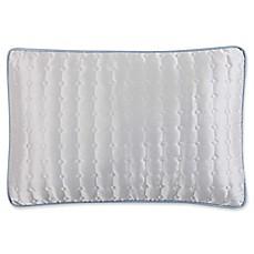 Blue Throw Pillows Bed Bath Amp Beyond