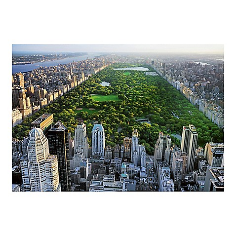 Ideal decor central park wall mural in green bed bath for Central park mural