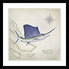 image of Sailfish Map II 21-Inch Square Framed Wall Art