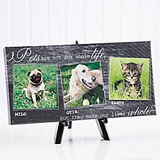 image of My Pets 5.5-Inch x 11-Inch Canvas Wall Art