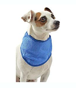 Bandana refrescante chica/mediana de tela Pawslife™ color azul