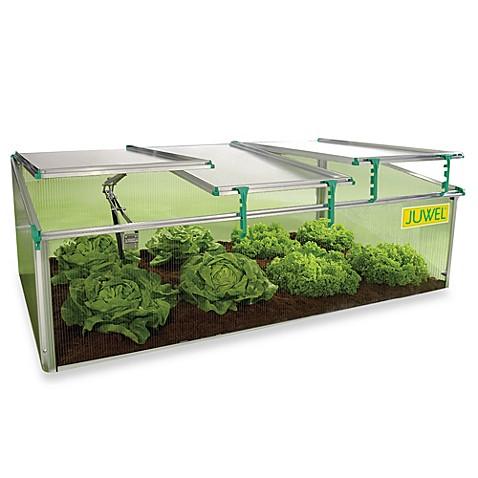 biostar premium cold frame 8mm mini greenhouse bed bath. Black Bedroom Furniture Sets. Home Design Ideas