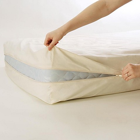 Bedcare By National Allergy 174 Organic Cotton 9 Inch