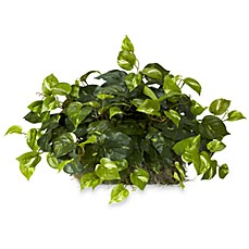 image of Nearly Natural Pothos Silk Ledge Plant