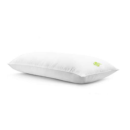 4-Earth Body Pillow