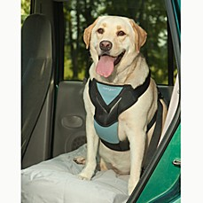 image of Bergan® Travel Safety Harness