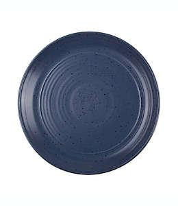 Plato trinche de cerámica Milbrook Bee & Willow™ Home color azul