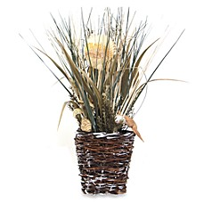image of Seashell and Grasses Arrangement