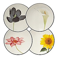 image of Noritake® Colorwave Floral Appetizer Plates in Graphite (Set of 4)