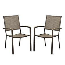 image of resin wood dining chairs set of 2