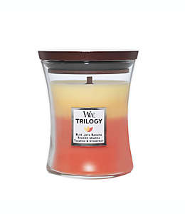 Vela mediana en vaso WoodWick® aroma tropical
