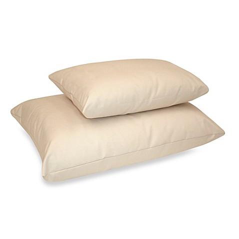 Naturepedic Reg Organic Kapok Cotton Standard Pillow