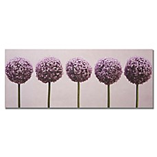image of Row of Alliums Canvas Art
