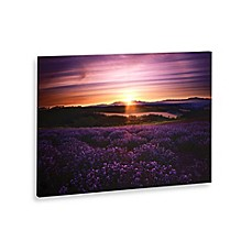 image of Lavender Sunset Landscape Canvas Wall Art