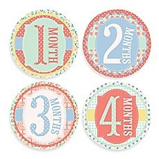 image of Sticky Bellies® Garden Party Milestone Stickers