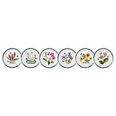 image of Portmeirion® Exotic Botanic Garden Assorted Bread and Butter Plates (Set of 6)
