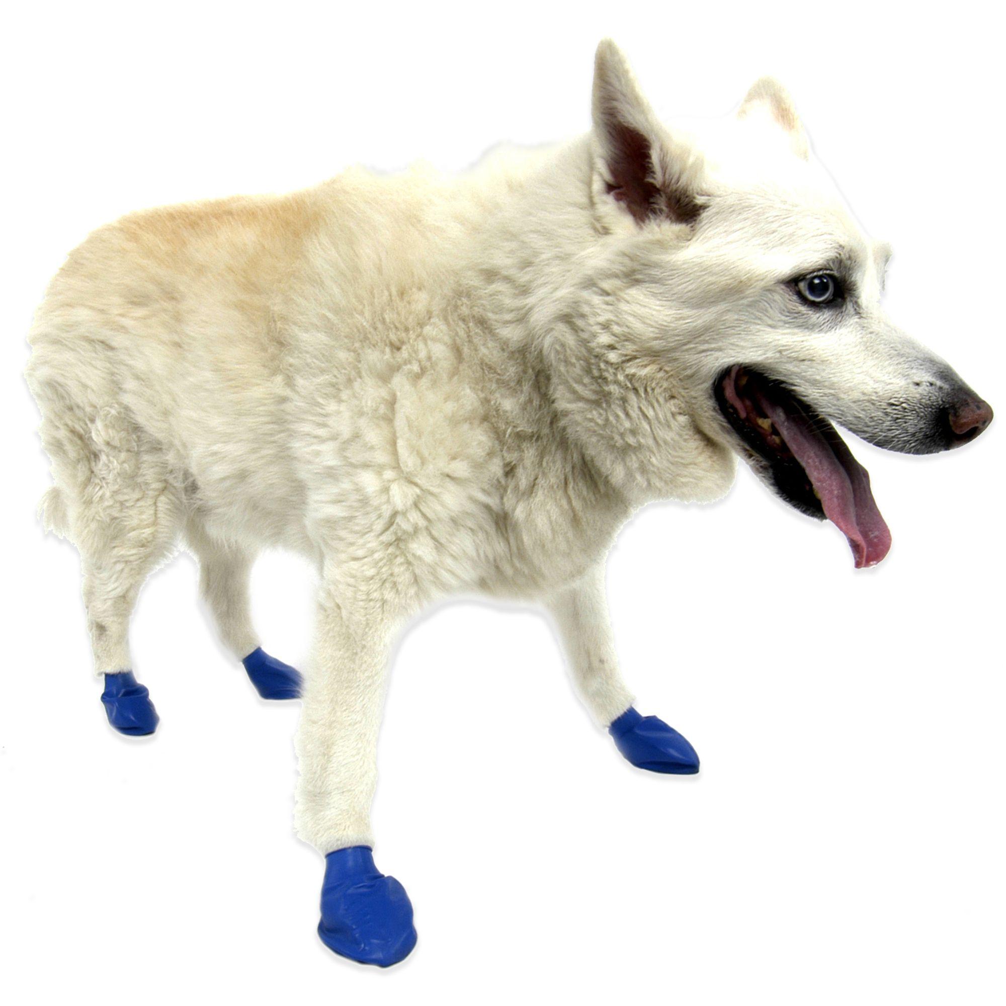 Pawz Size M Dog Boots