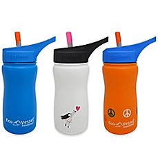 image of Eco Vessel® FROST 13 oz. Insulated Kids Straw Top Water Bottle