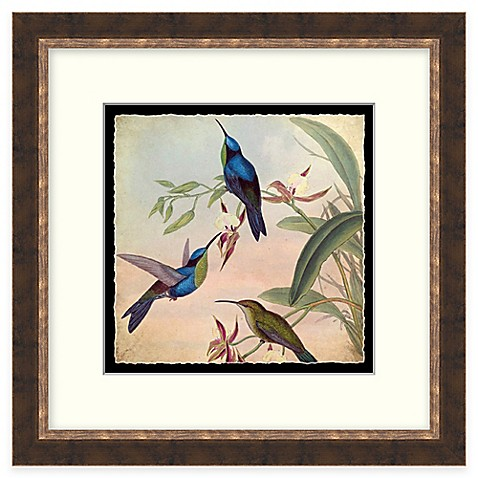 Buy hummingbird garden 1 framed wall art from bed bath for Where to buy framed art