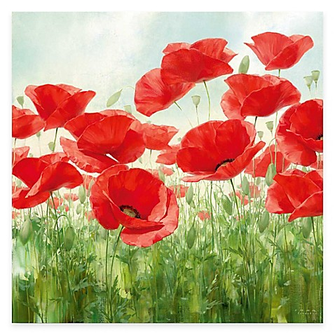 Courtside Market Red Poppies Canvas Wall Art - Bed Bath & Beyond