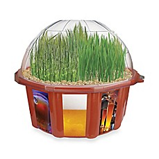 image of Beer Garden Plant Kit