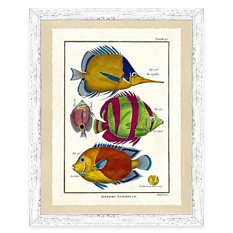 School of fish print ii framed wall art bed bath beyond for School of fish wall art