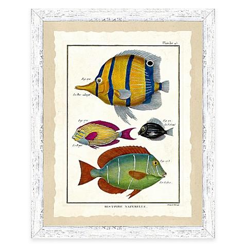 Buy school of fish print v framed wall art from bed bath for School of fish wall art