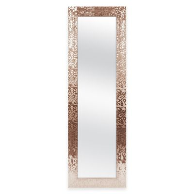 OvertheDoor Mirrors Storage Mirrors Jewelry Organizers