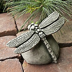 image of Campania Dragonfly Statue in Alpine Stone